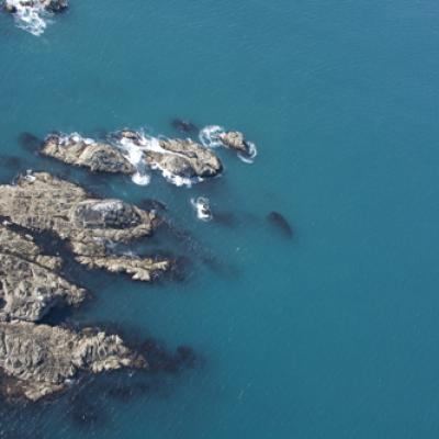 Ouessant Img 0127